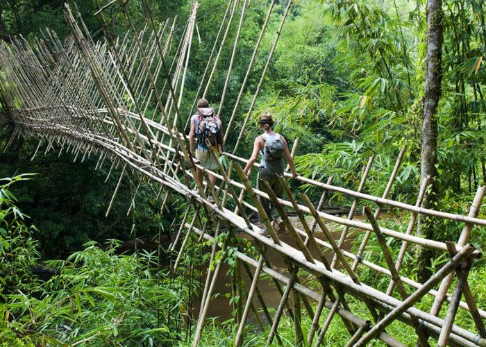 Puente borneo
